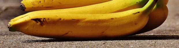 bananas-1646543_1280.jpg