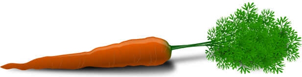 carrot-33625_1280.png