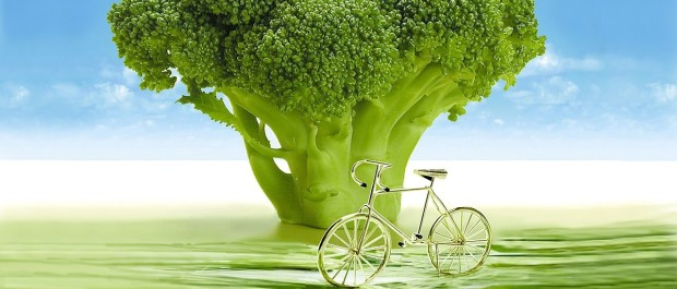 vegetables-694304_1280.jpg