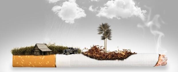cigarette-1533104_1280.jpg