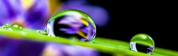 drop-of-water-351778_1280