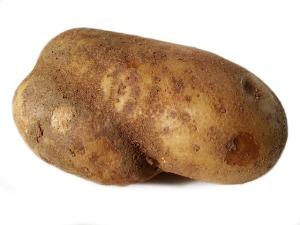 potato-1166407_640
