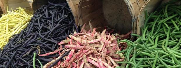 beans-260210_1280.jpg
