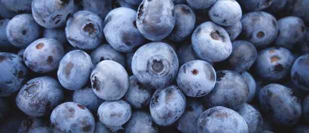 blueberries-690072_1280